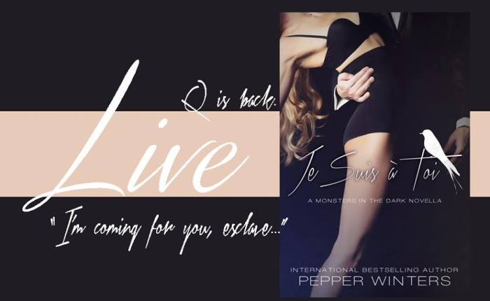 5 🍀 Review for Je Suis à Toi by Pepper Winters