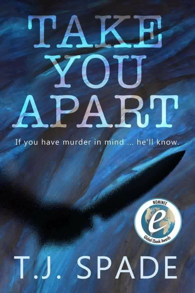 🌟🌟🌟 5 🍀 Review – Take You Apart by TJ Spade
