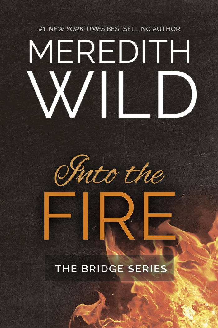 🌟🌟🌟Into the Fire by Meredith Wild 5 🍀 Review🌟🌟🌟