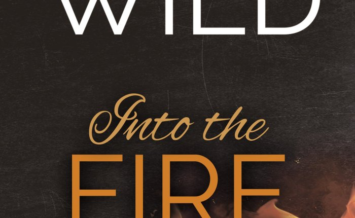 🌟🌟🌟Into the Fire by Meredith Wild 5 🍀 Review 🌟🌟🌟